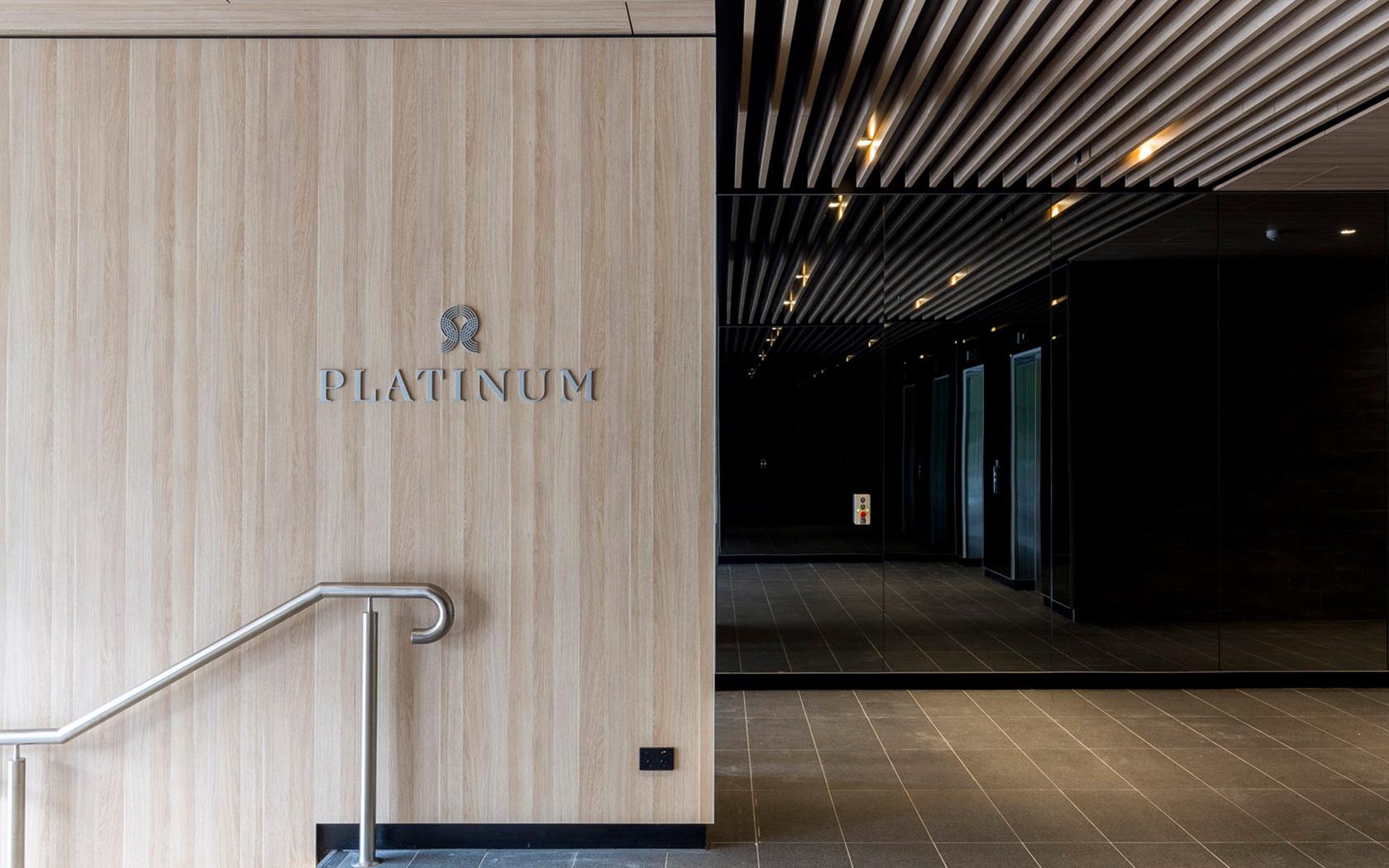 Platinum-06